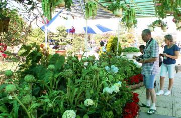 Khai mạc hội hoa xuân Đà Lạt 2015