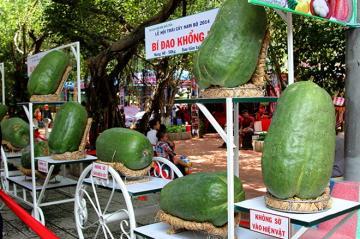 Lệ hội trái cây Nam Bộ 2014 tại Suối Tiên